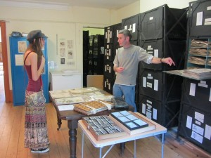 Visitors looking at herbarium specimens