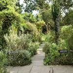 SLBI Historic Garden