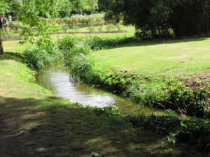 Uses of our Wild Plants, Morden Hall Park