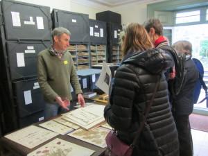IMG_7721 NGS herbarium