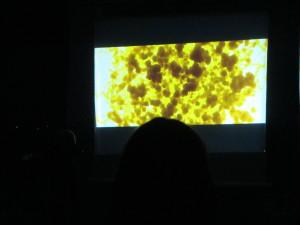 IMG_7938  Film