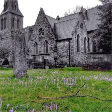 Plant ID in St Leonard's Churchyard, Streatham