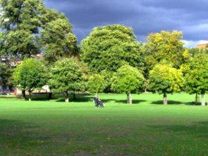 Tree Walk – Peckham Rye Park