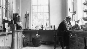 Women who collect and describe plants – a global analysis, 1753 – 2018