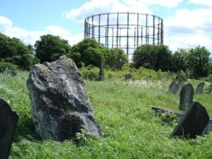 Kensal Green Cemetery Plant Hunt – part of the City Nature Challenge
