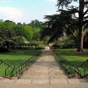Summer Plant Walks – Streatham Tree Walk