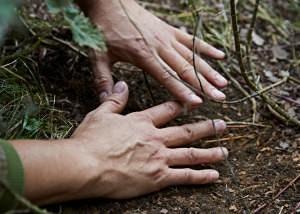 Forensic Ecology – An online workshop