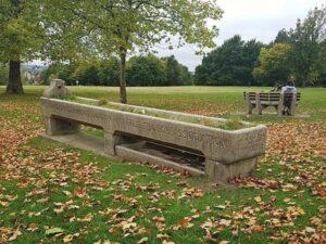 Autumnal Plant Walk – Streatham Common