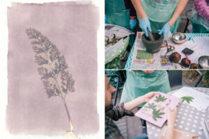 Covid 19 Plant Prints – A creative lockdown photographic project