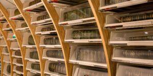 Assembling the Sloane Herbarium – An online talk