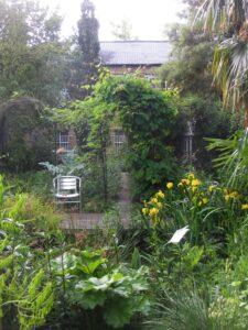Open Garden 26th August