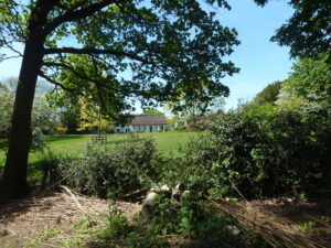 Trip to Haslemere Educational Museum and Swan Barn Farm (National Trust)